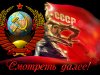 zsrr.png